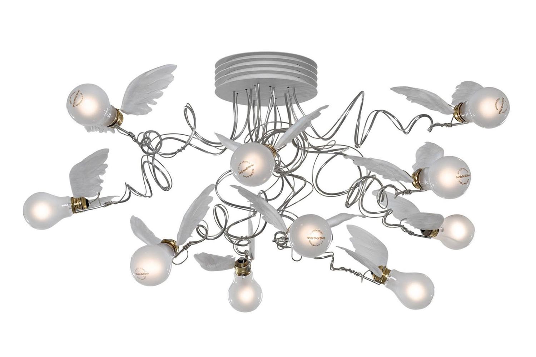 Birdies-nest